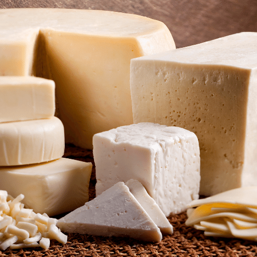 other cheese formats processing manufacturing cheddar mozzarella